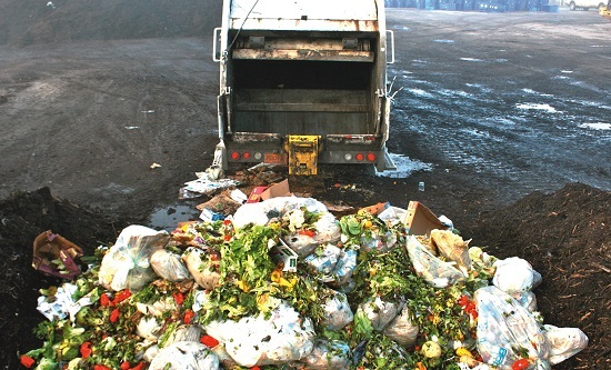 Roughly one third of the food produced in the world for human consumption is wasted or lost every year.