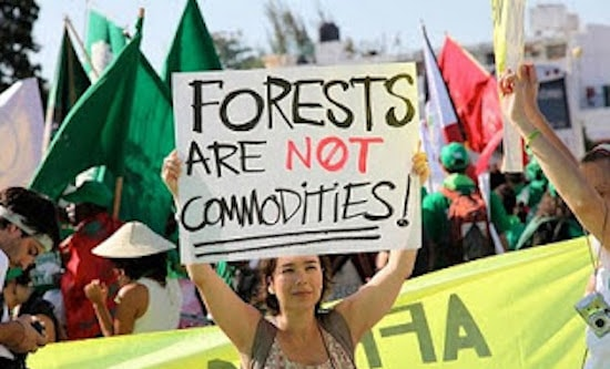 Protester holds sign, 'Forests are not commodities!'